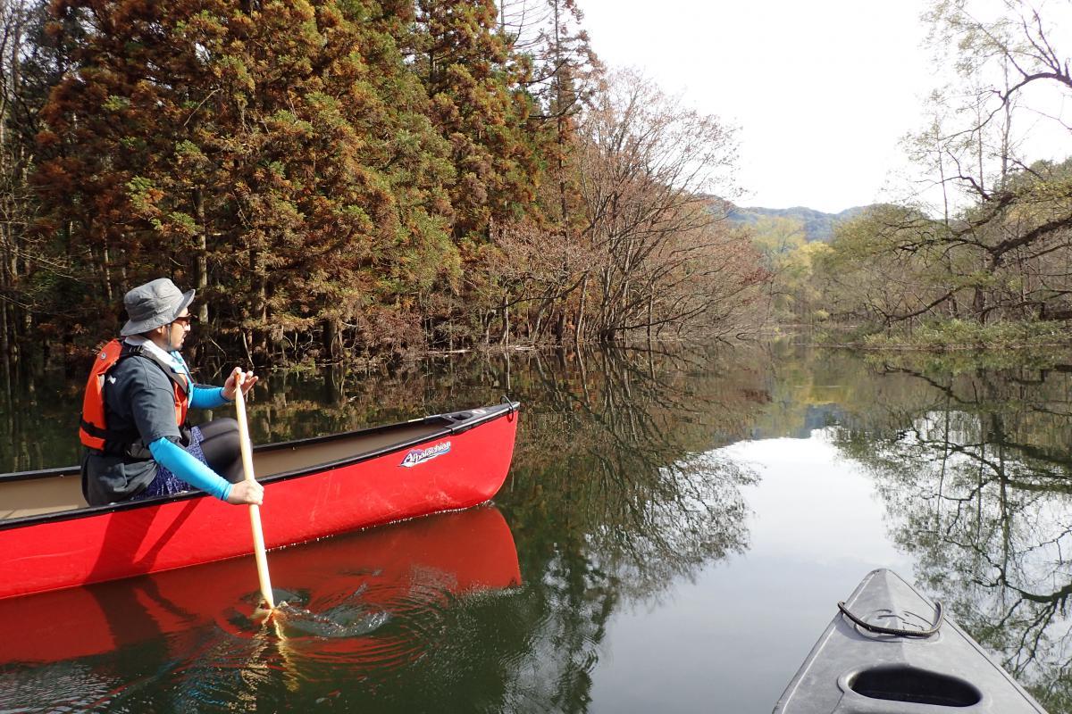 津轻白神湖(大川)、皮划艇游览