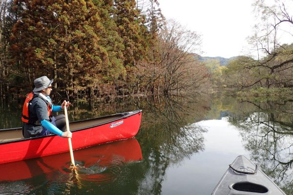 Canoe Tour of Shirakami Sanchi Great River